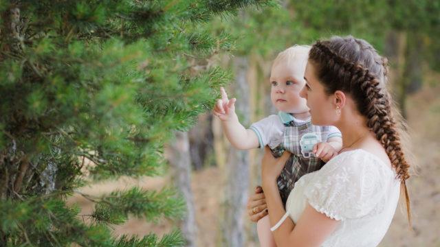 Семейная фотосъемка в сосновом лесу